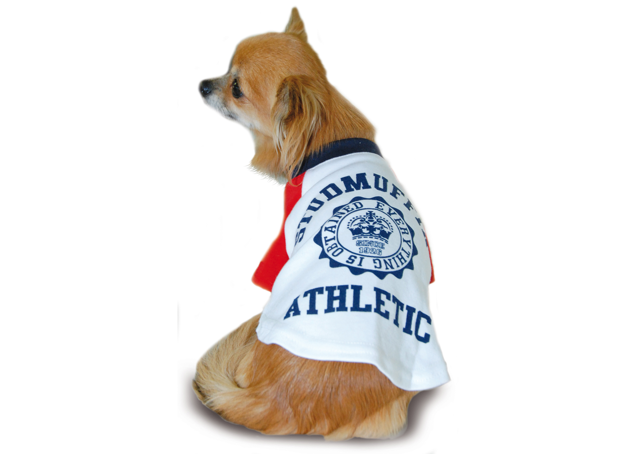 Max+Co Stafmuffin Athletic Shirt Attire For Dogs
