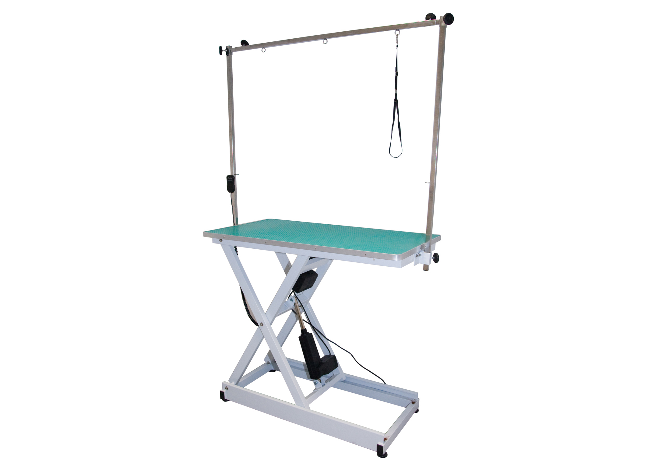 Groom-X Table Electrique 110x60x42-100cm Table De Toilettage Professionnel Pour Toiletteurs