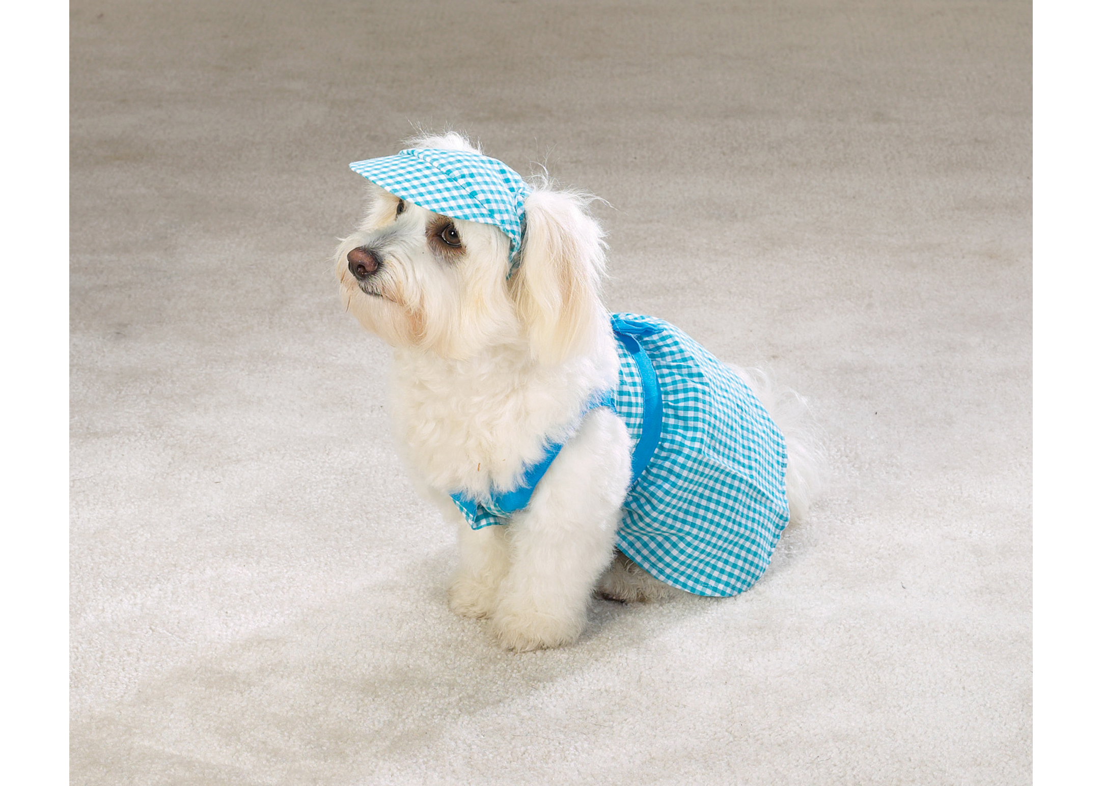 East Side Collection Gingham Dress Attire For Dogs