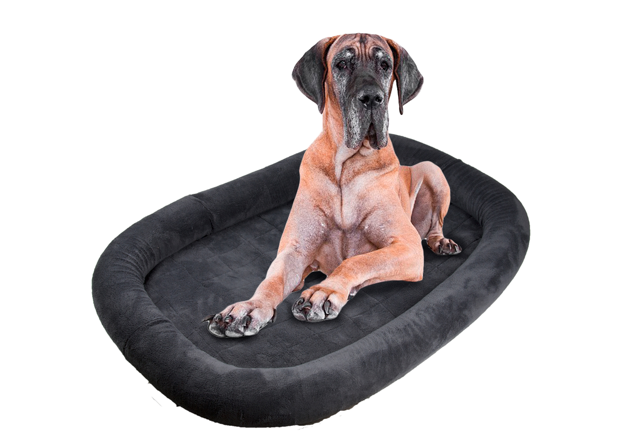 Snuggle Zone Bumper Cage Bed Memory Foam
