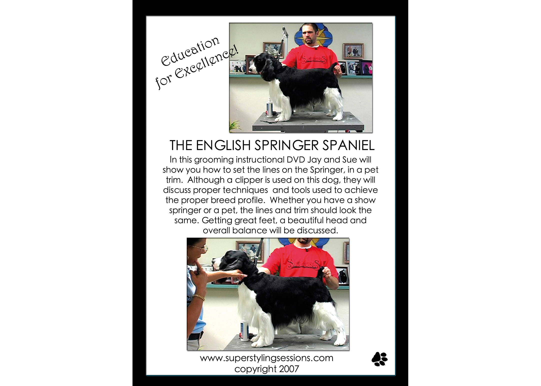 Super Styling Sessions DVD Super Styling Sessions Springer Spaniel Educatieve DVD