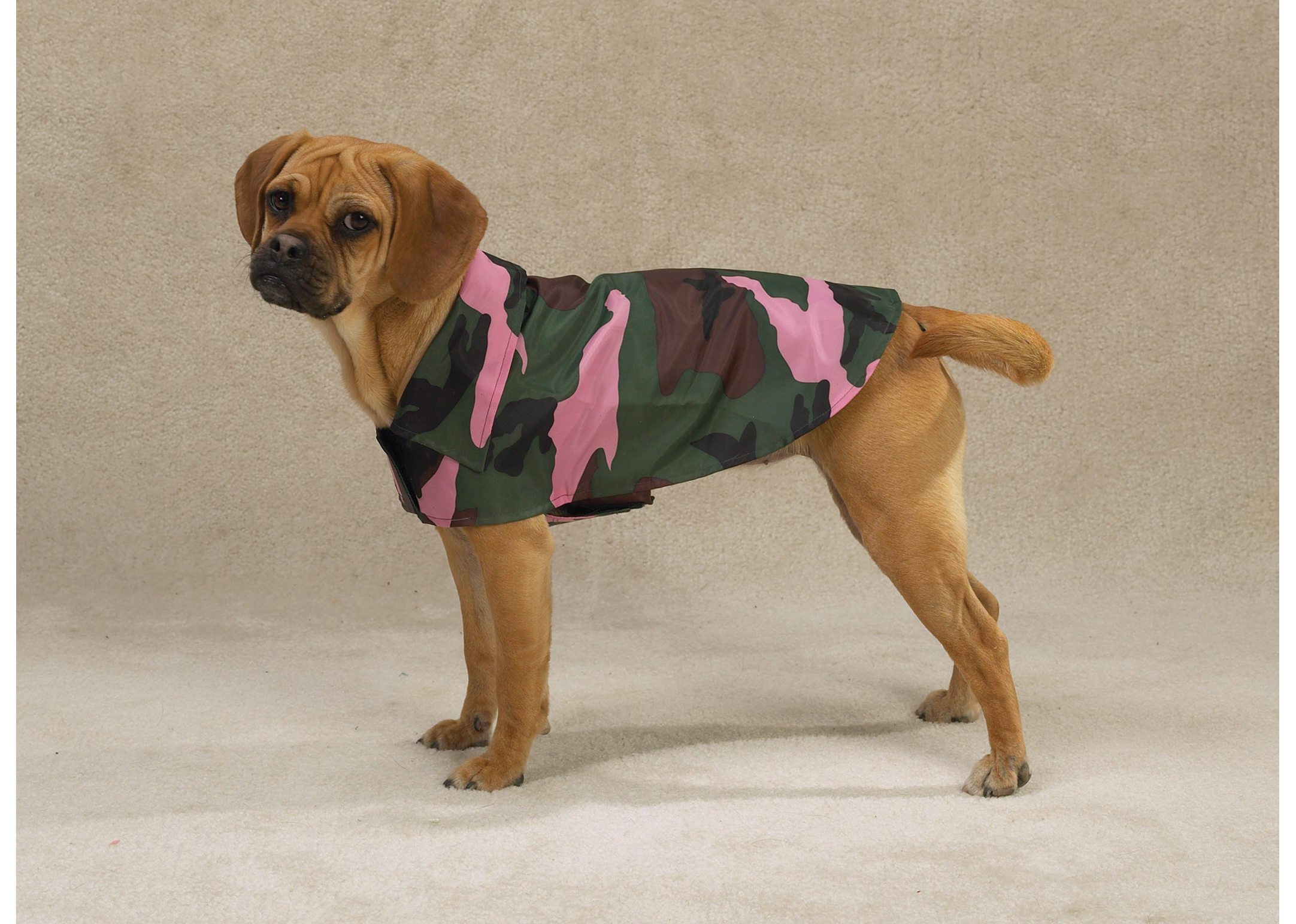 Casual Canine Camo Jacket Attire For Dogs
