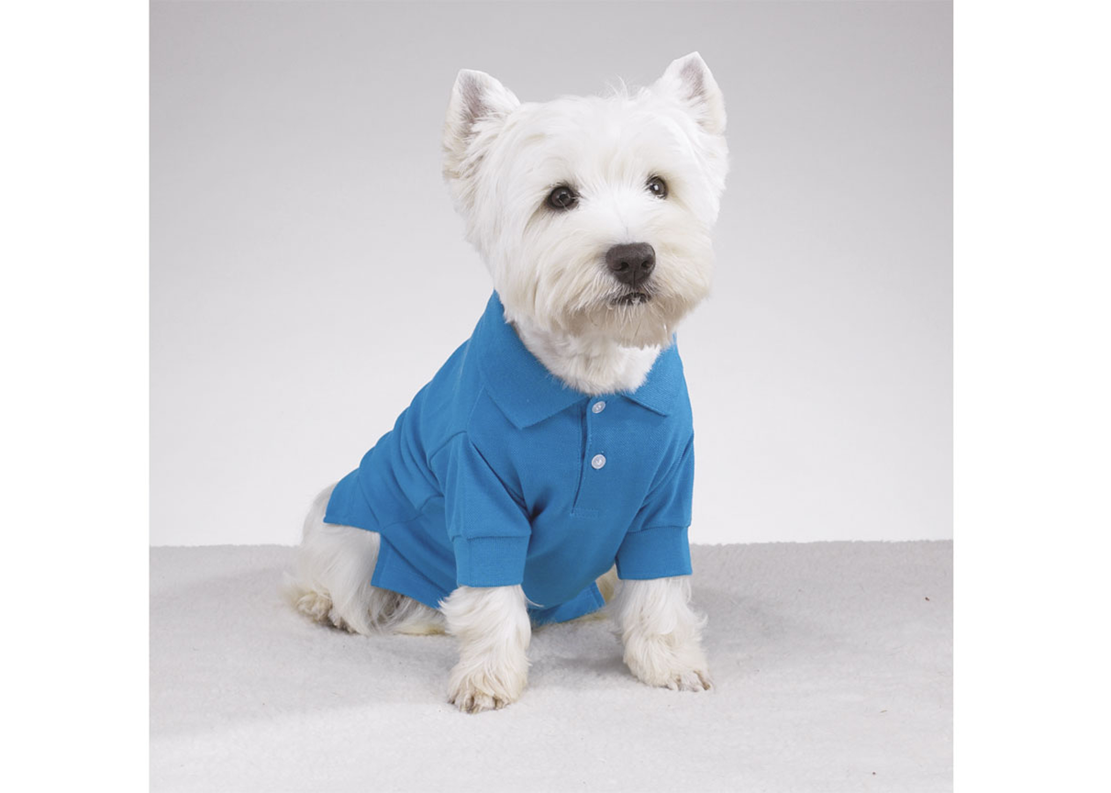 East Side Collection Preppy Puppy Polo Cape Kledij Voor Honden