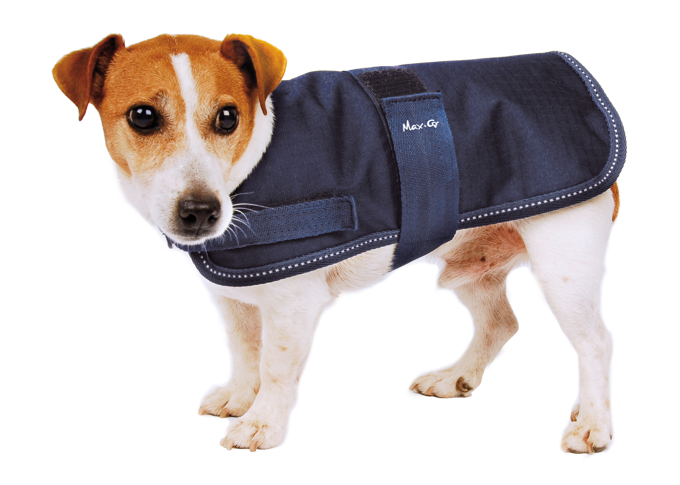 Max+Co All Weather Dog Coat