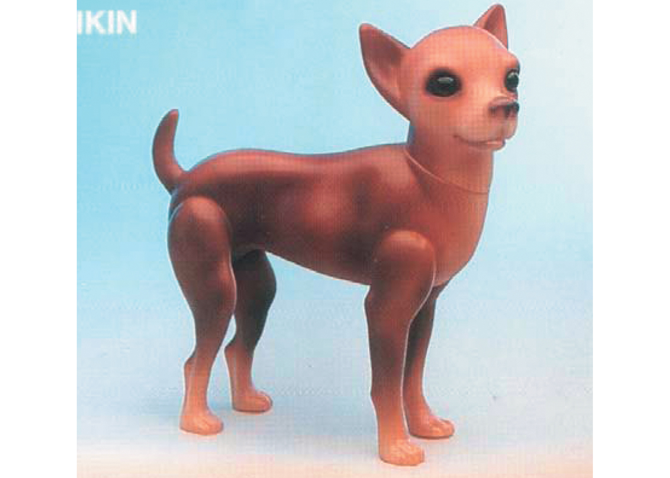Mannequin - Chihuahua