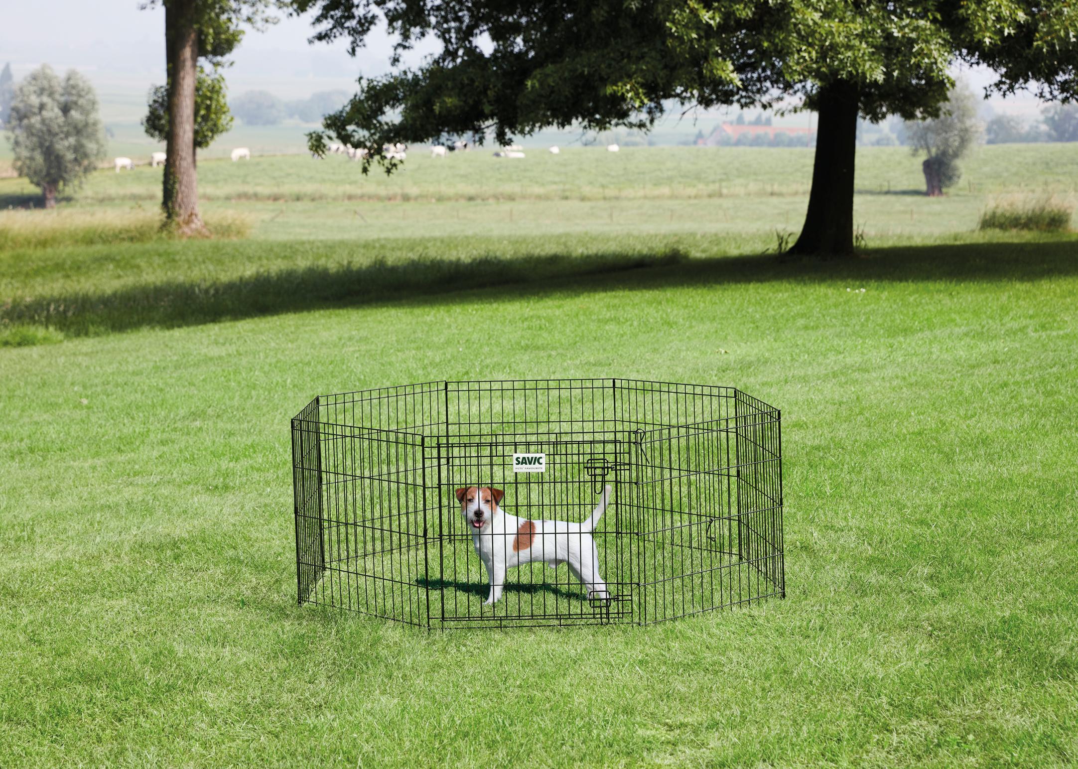 Savic Dog Park Taille 1 - 8x60cmBx61cmH Pour Chiots Noir