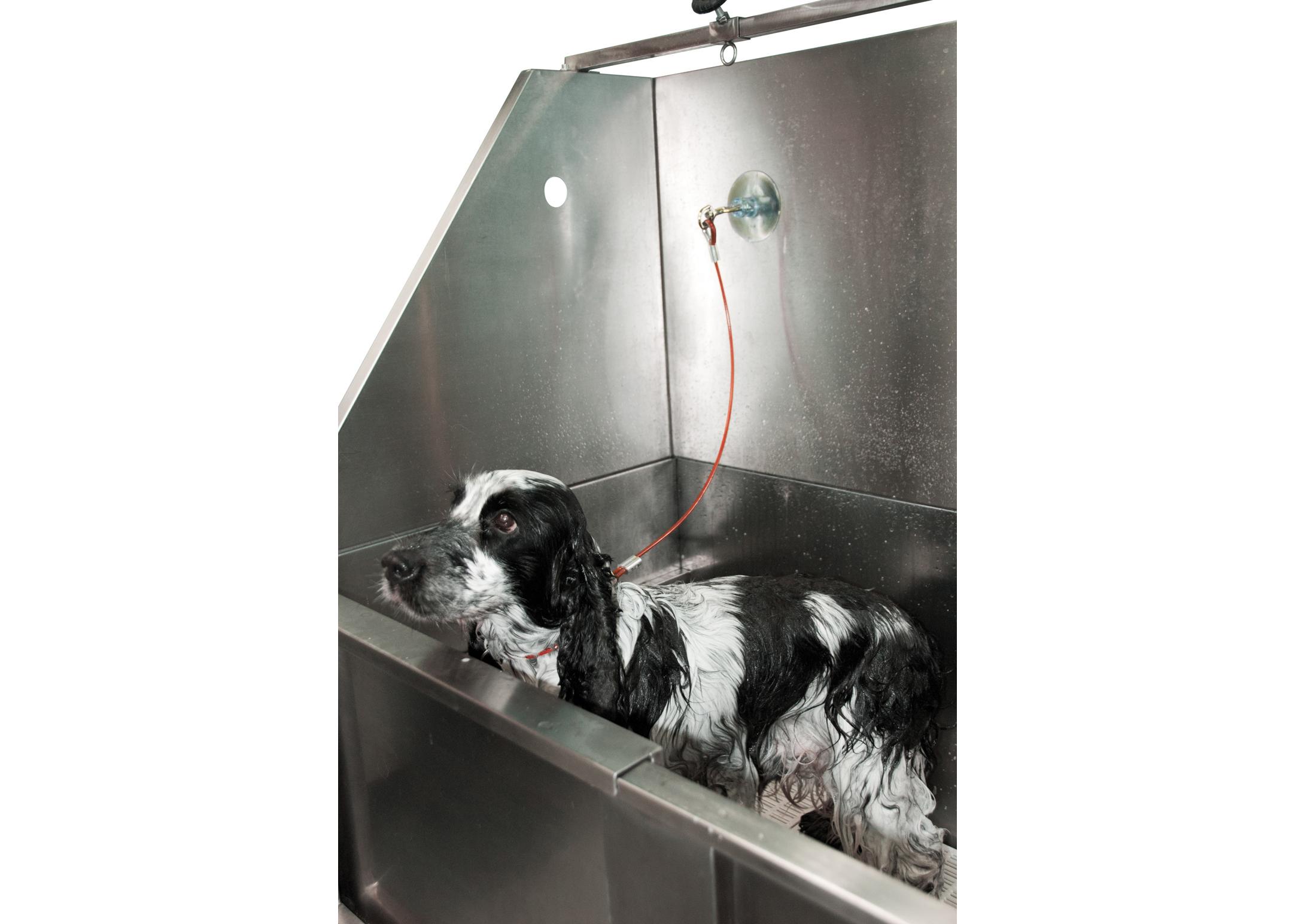 Groom-X Cable de bain avec ventouses