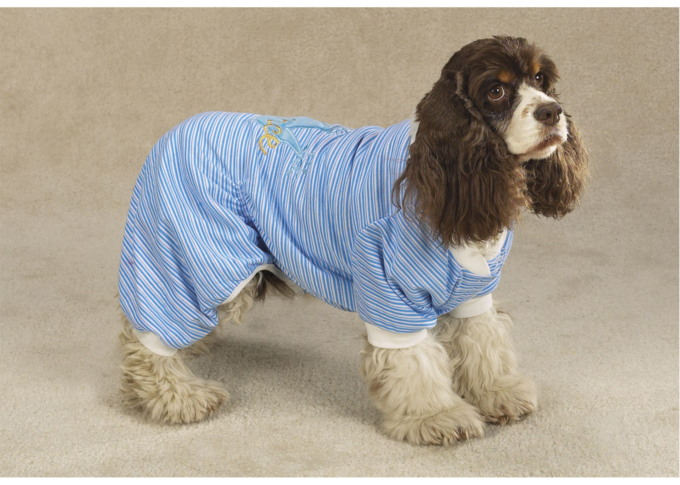Zack & Zoe Pajamas Prince Blue L 40-50cm Attire For Dogs