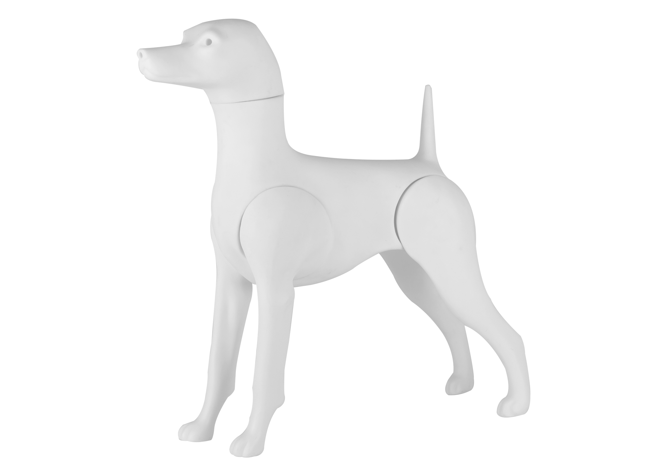 Starzclub Model Dog Poodle Magnetic Educational Dog