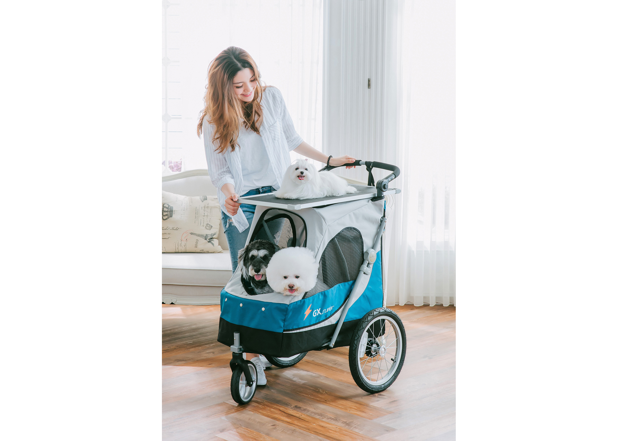 Petstro Medium Buggy, Purple/Grey