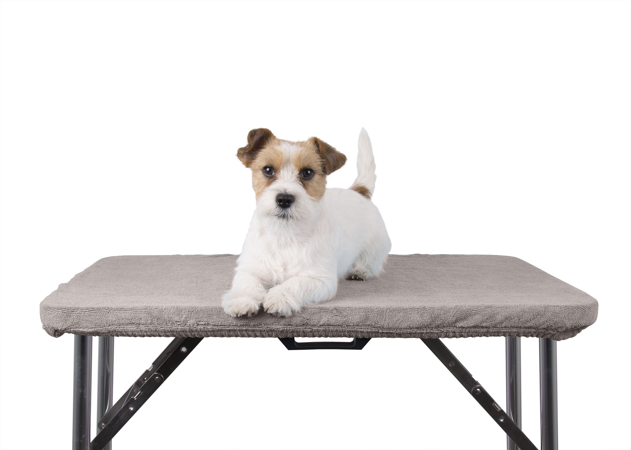 Show Tech+ Table Toga Grey Table Cover for Grooming Table