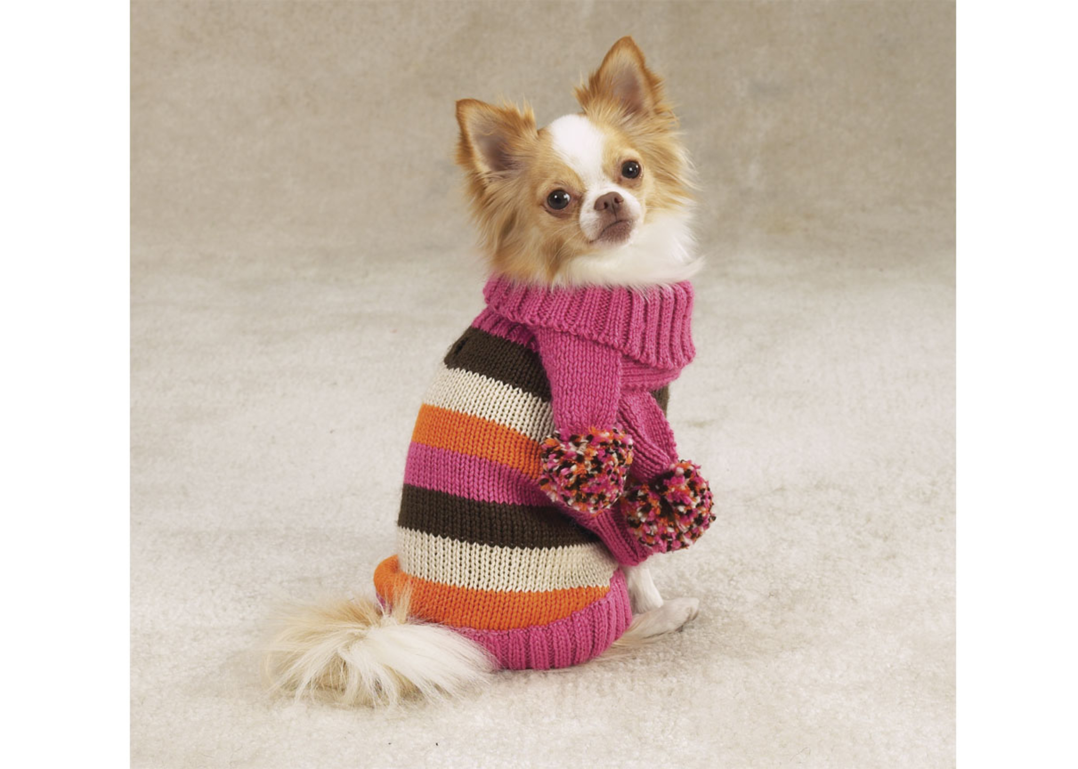 Zack & Zoe Multi-Stripe Sweater with Hat & Scarf Attire For Dogs