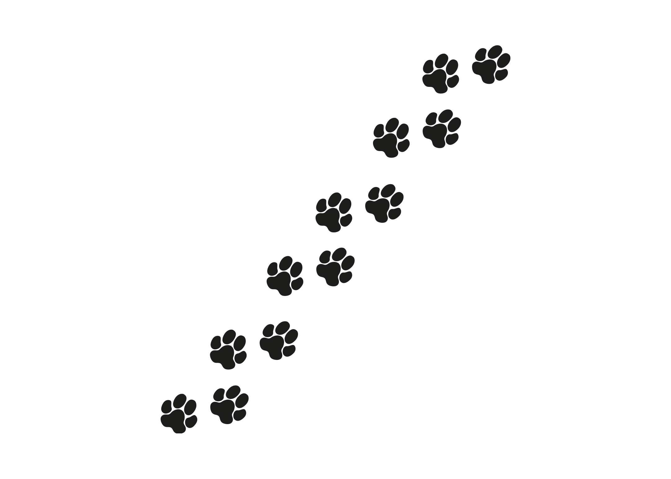 K-design Pawprint 12 pcs Sticker For Groomers