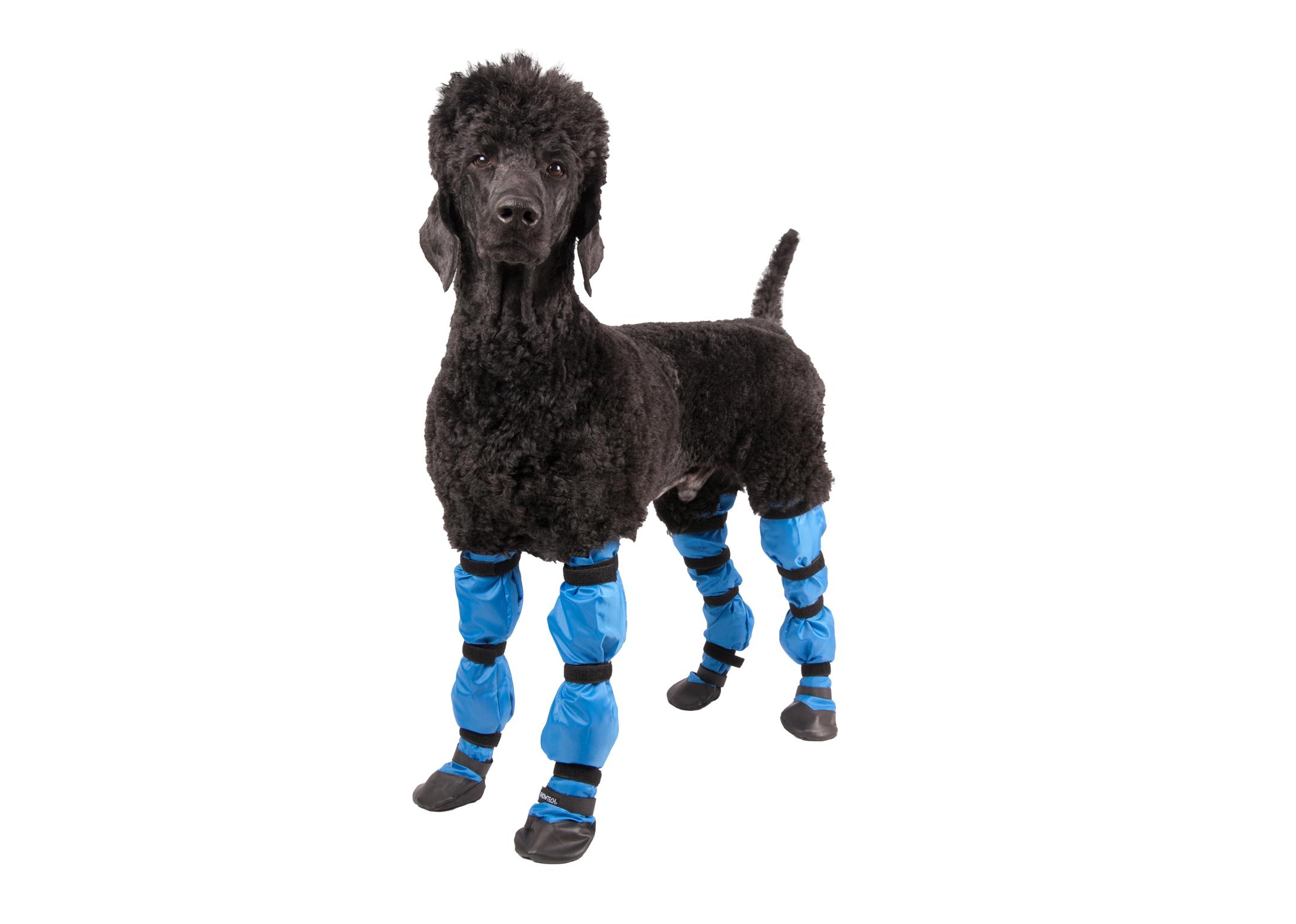 Show Tech Beschermende Laarzen Voor honden