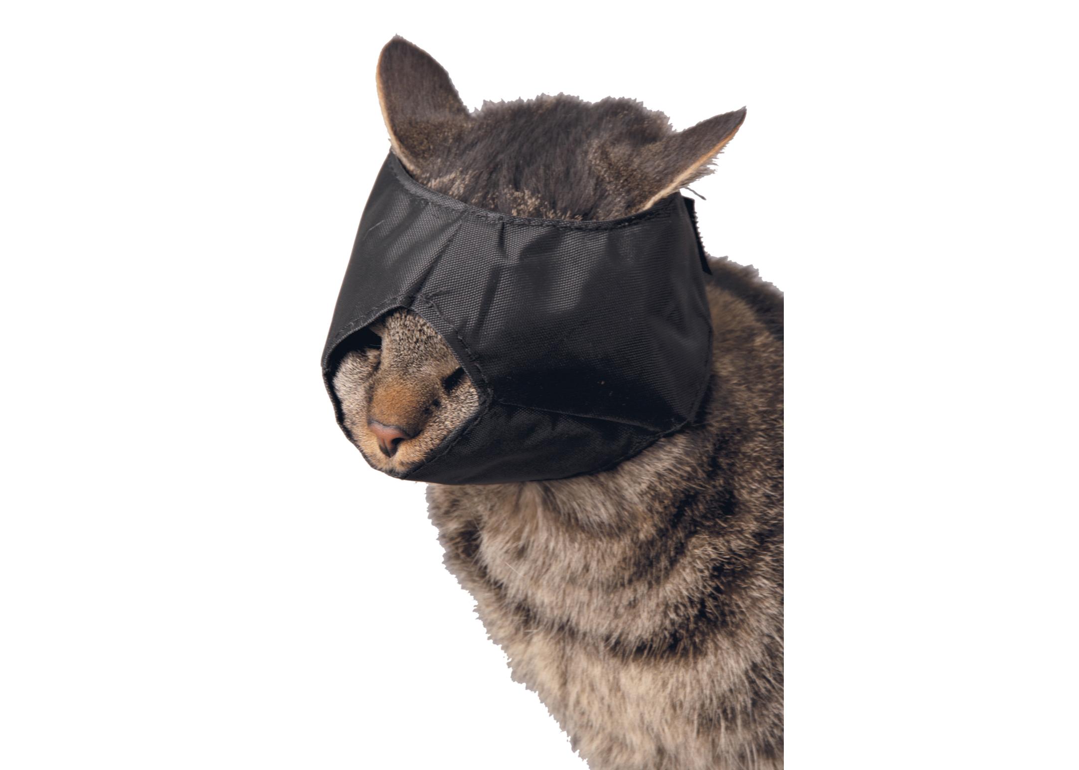 Show Tech Muzzle Set 3 pcs Cat Muzzle