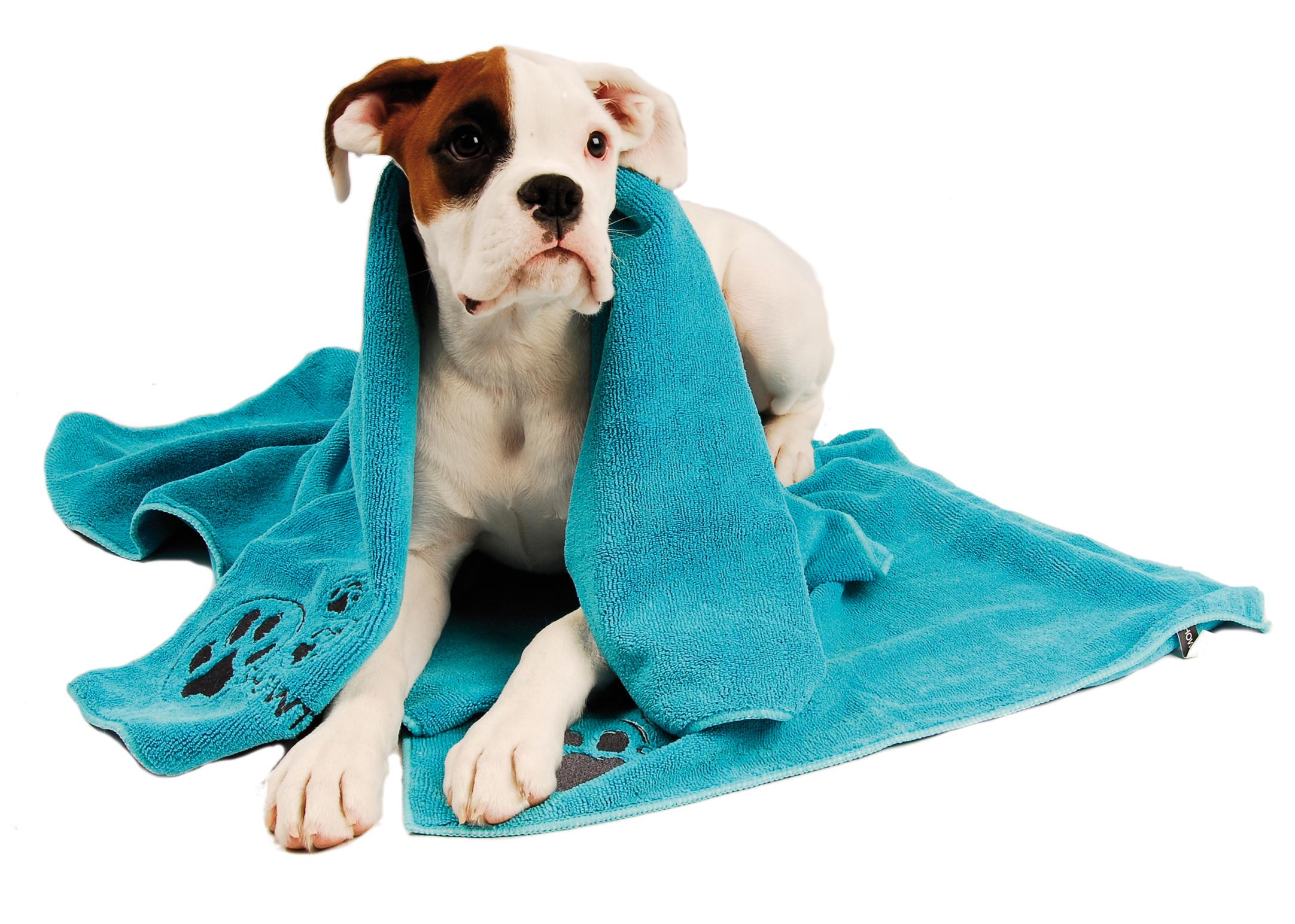 Show Tech+ Microfibre Handdoek met Broderie 56x90cm Turquoise Handdoek