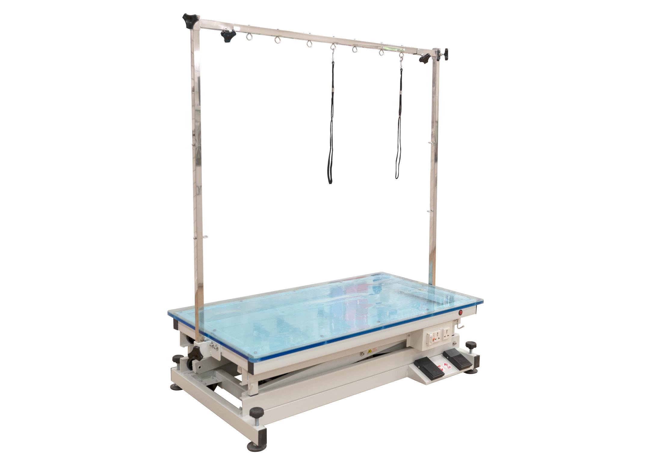 Groom-X LowLine Salon Table Surface Illuminé 110x60x32-102cm avec Potence Double Table De Toilettage Professionnel