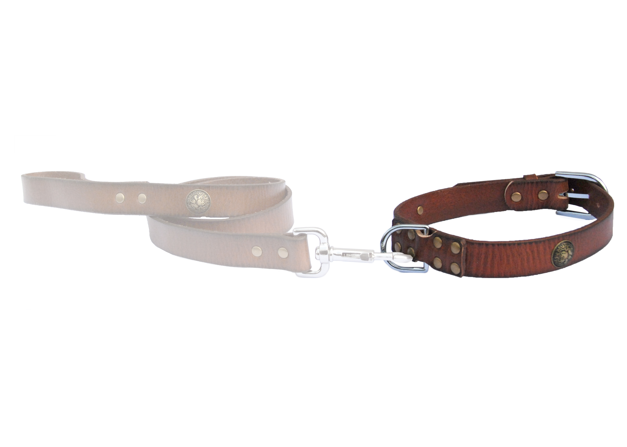 Dapper Dogs Bahia Brown Leather Collar For Dogs