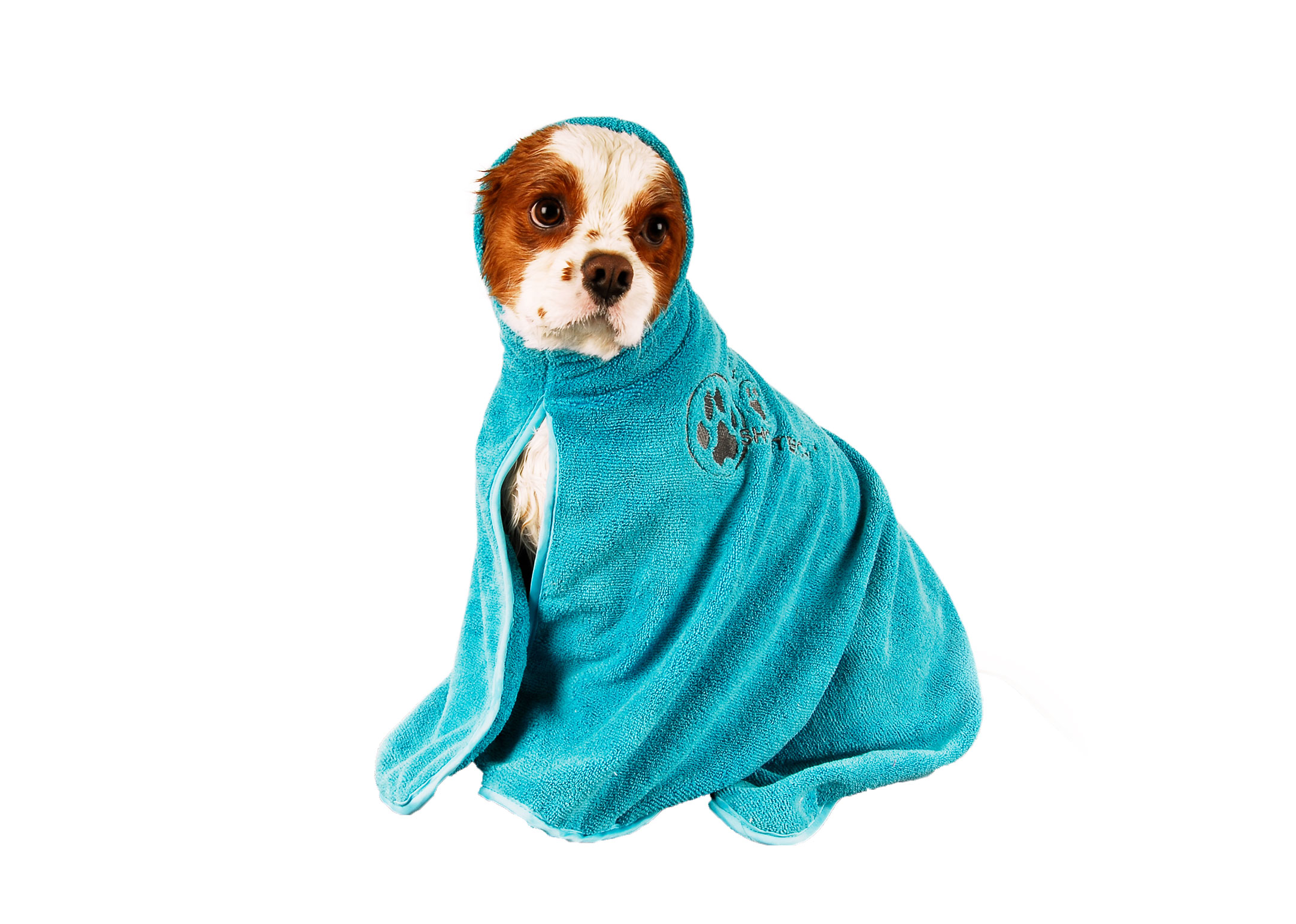 Show Tech+ Dry Dude Turquoise Pet Towel For Dogs And Cats