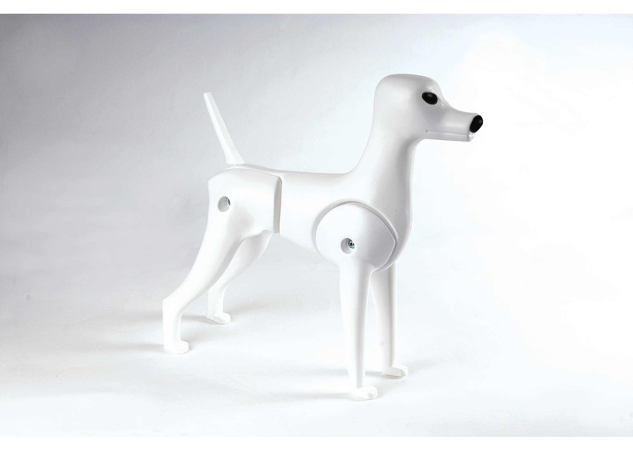 Show Tech Model Dog Replay + Hair Educational Dog