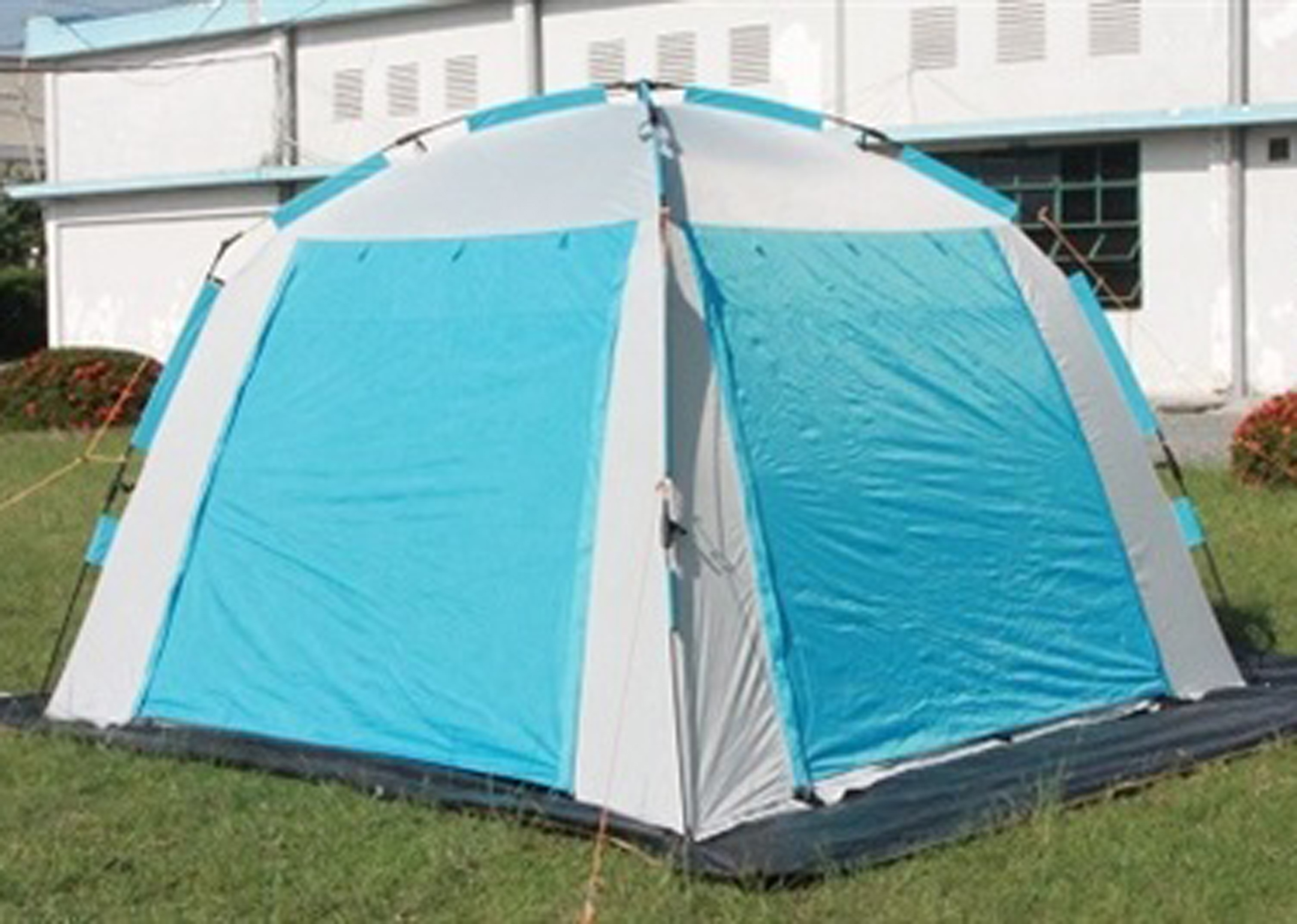 Dog Show Event Tent Blue 300 x 300 cm - Limited Edition