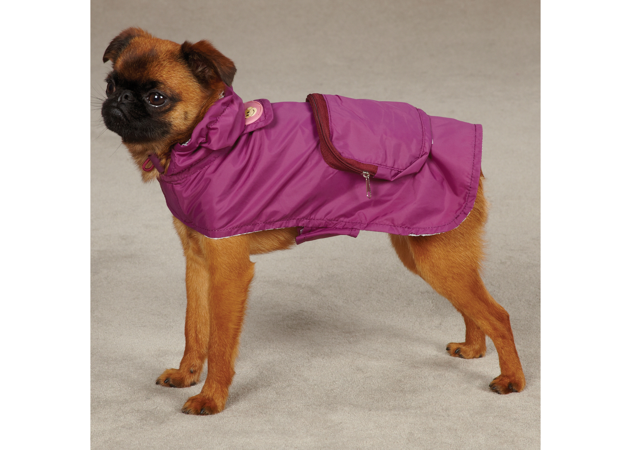 East Side Collection Monkey Business Stowaway Veste Vêtements Pour Chiens