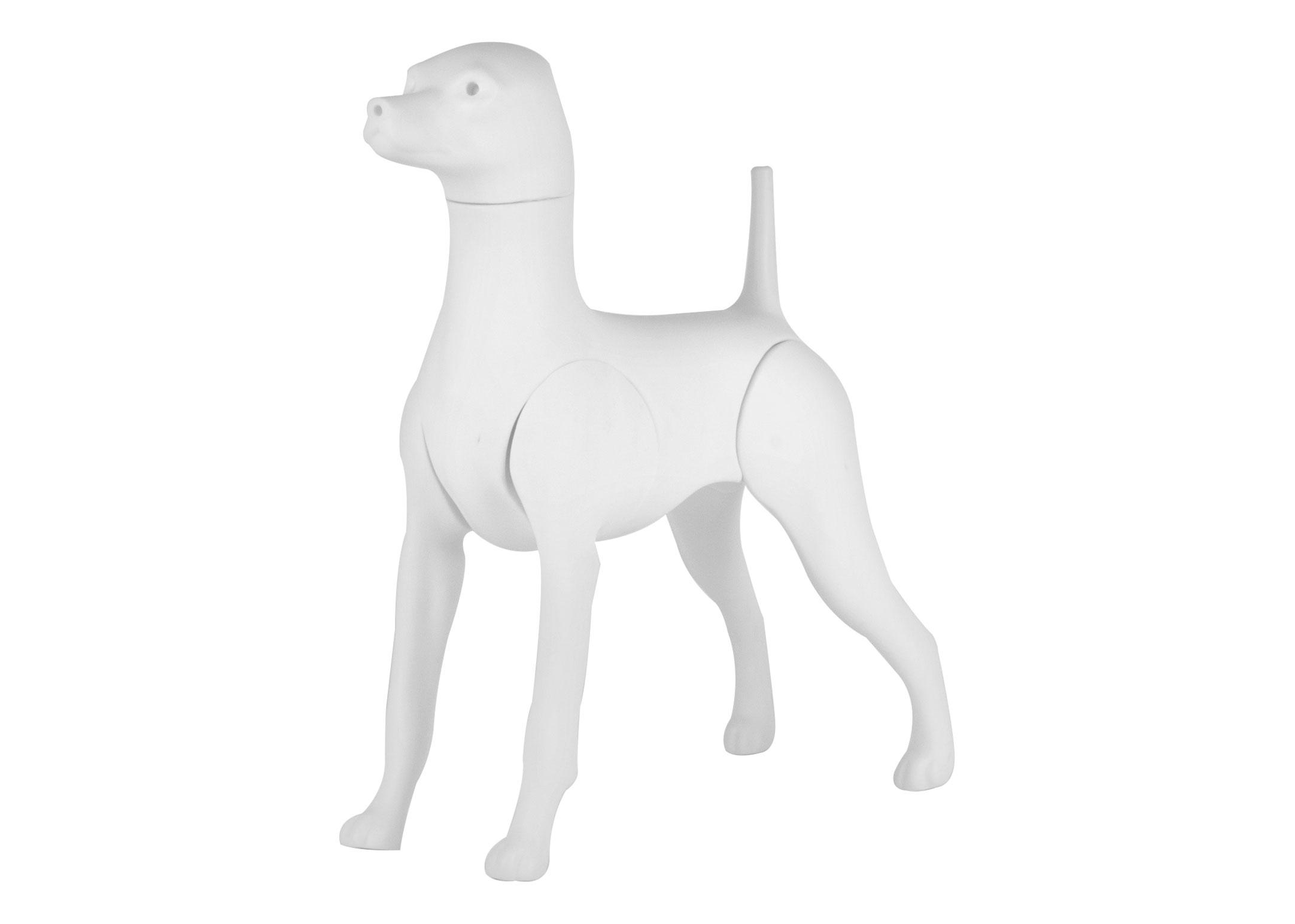 Starzclub Model Dog Poodle Asia Style Educational Dog