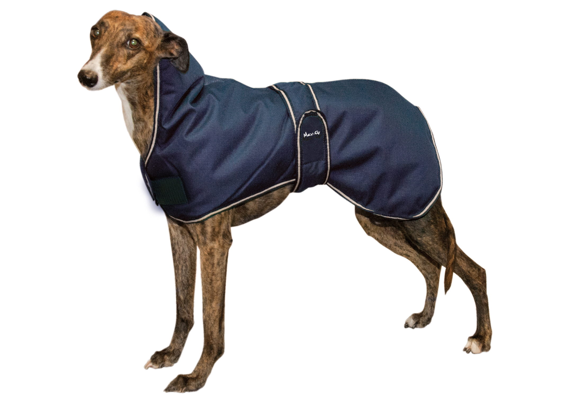 "Max+Co All Weather Dog Coat ""Whippet\"""