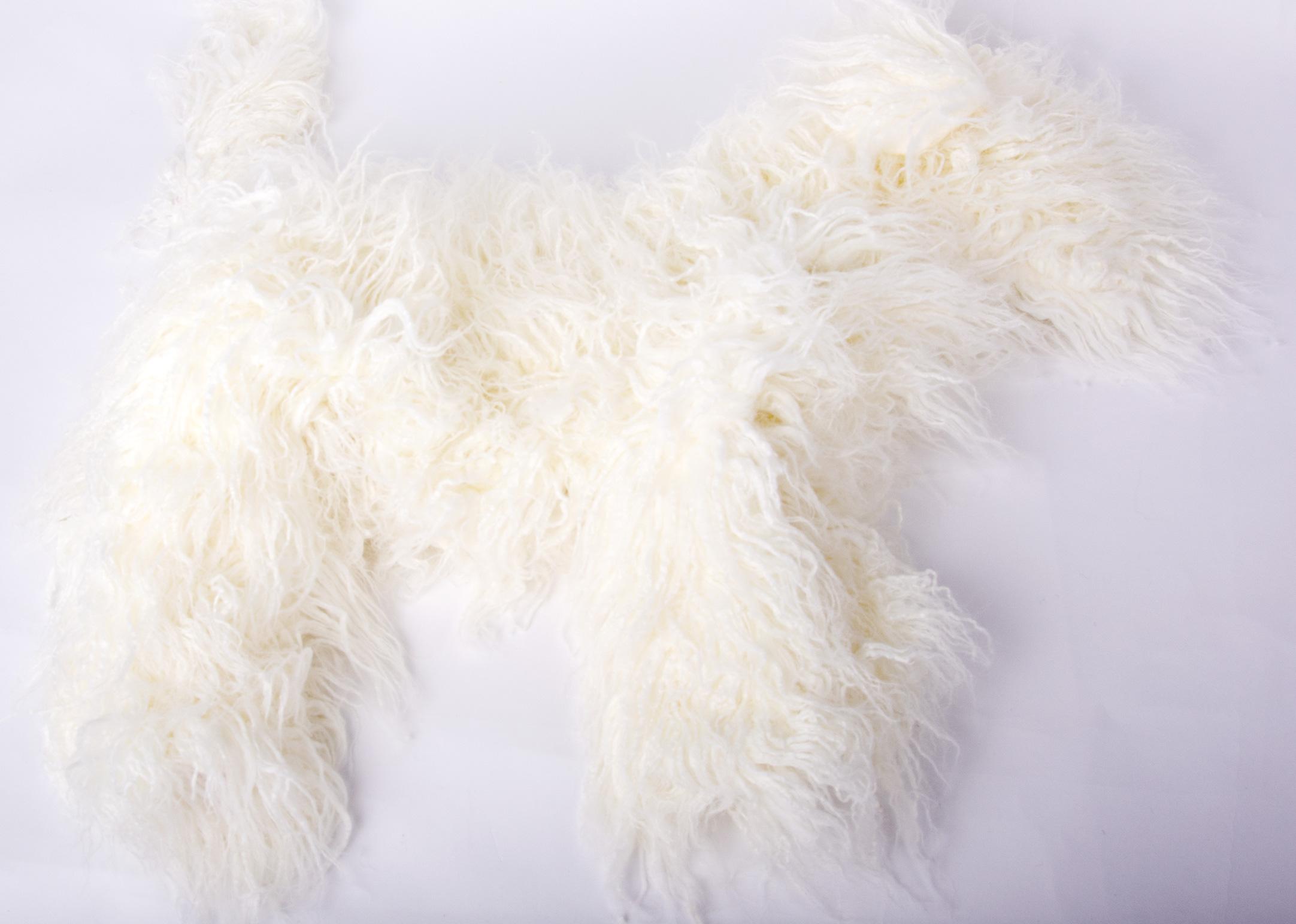 Bichon White Coat for Model Dog (model dog not included)