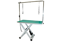 Groom-X Portable Electric Table Green 120x65x42-96cm Professional Grooming Table For Groomers