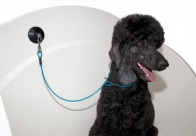 Groom-X Cable Bath Restraint with Suction SS blue For Dogs