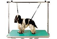 Show Tech Pro Table Noose Set Mini - 1cm Noose Set For Dogs