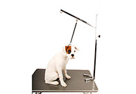 Show Tech Heavy Duty Control Post Grooming Post For Groomers