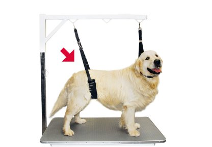 Show Tech Comfort Belly Strap For Big Dogs Transgroom