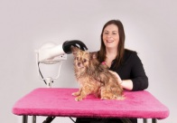 Show Tech+ Table Toga Hot Pink Table Cover for Grooming Table