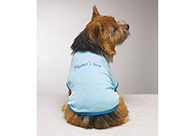 Casual Canine Mama's Boy Tee Blue XL 50-60cm Attire For Dogs