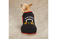asual Canine Halloween T-Shirt Vampire Dog Attire For Dogs