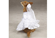 East Side Collection ESC Yappily Ever After Wedding Dress Attire For Dogs
