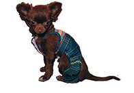 Fluff Jeans Over-all Stripes Attire For Dogs