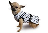 Max+Co Poka Dot Dress Attire For Dogs