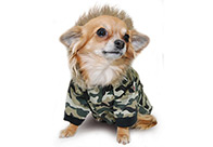 Max+Co US Army Overall XXS - 15cm Attire For Dogs