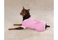 Zack & Zoe Pajamas Princess Attire For Dogs