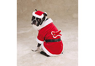 Zack & Zoe Xmas Santa Paws Costume Attire For Dogs
