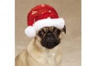Zack & Zoe Christmas Sparkling Santa Hat Christmas Attire For Dogs