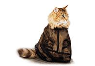 Show Tech Cat Bag