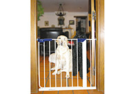 Show Tech Safety Pet Gate 72,5 cm - 81 cm wide Pet Gate For Dogs