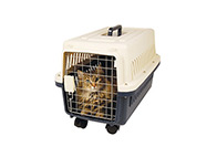 Show Tech Globetrotter Deluxe with Wheels Animal Transportation For Dogs