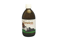 Belgavet Kernelcote Conditioning Supplement For Dogs, Cats And Horses
