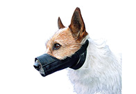 Show Tech Muzzle For Dogs