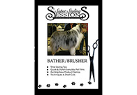 Super Styling Sessions DVD Super Styling Sessions Bather/Brusher Educational DVD
